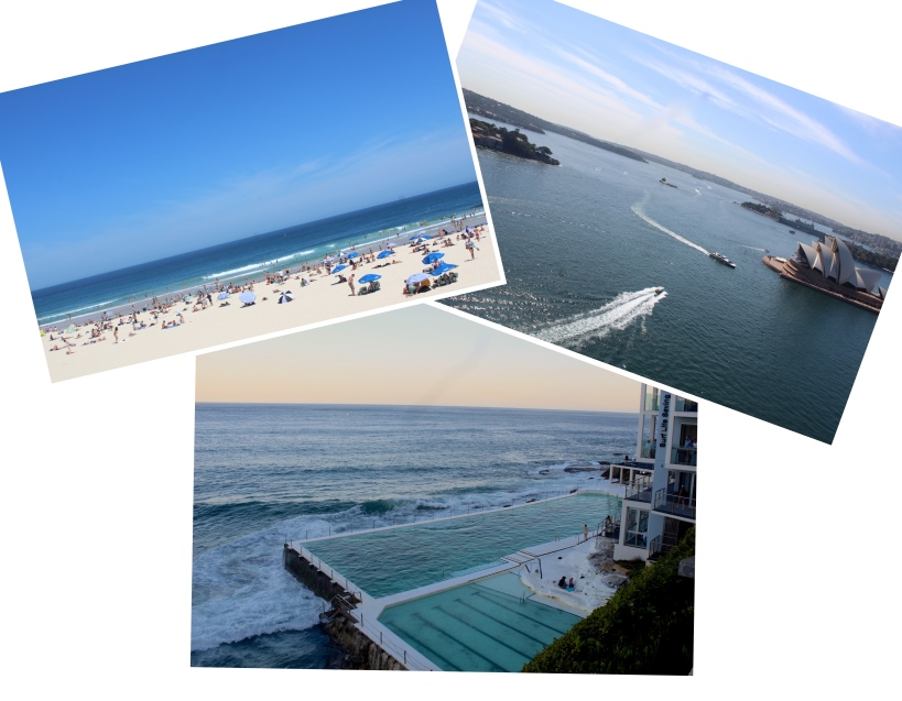 Collage_Fotorzdq.jpg